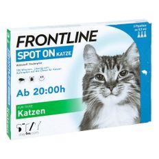 frontline 06 - matthias lein - 22.08.19
