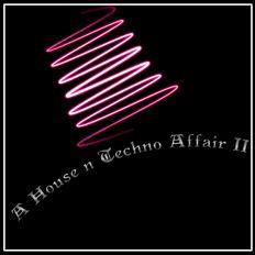 A House N Techno Affair II