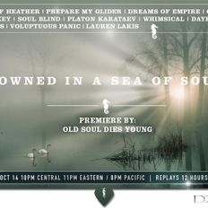Drowned in a Sea of Sound, Volume 46