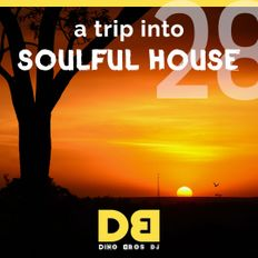 A trip into Soulful House (Trip Twentyeight) - Music can touch your soul