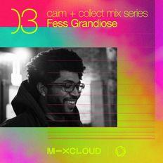 Calm + Collect Mix Series 03- Fess Grandiose