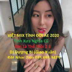 -  VIỆT MIX TÌNH ĐỜI AE 2020 | Tình Xưa Nghĩa Cũ & Đời Là Thế Thôi 2 | DJ Dượng Bi (Giao Xuân) Mix