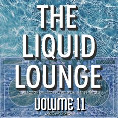 The Liquid Lounge : Volume 11