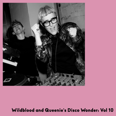Wildblood and Queenie Disco Wonder Vol 10