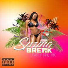 Spring Break Party King Mix