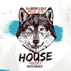 House Husky Mix03 House Heads / House, Groove House, Jazzy House, Deep / Insta & Socials @djbearcole