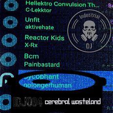 IDJ084: Cerebral Wasteland -Harsh-Industrial-