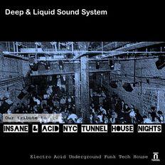 Insane & acid nyc tunnel house nights