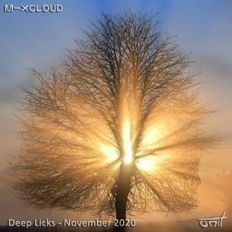 Deep Licks - November 2020