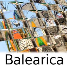 Balearica January 2020