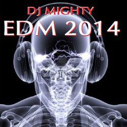 DJ Mighty - EDM 2014
