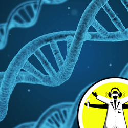 Is DNA the Basis for all Life in the Universe?