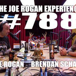 #788 - Brendan Schaub