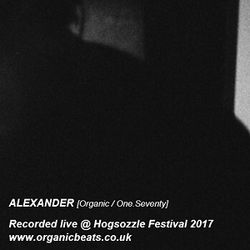 Alexander (Jungle Set) Live at Hogsozzle Festival 2017