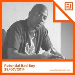 Potential Bad Boy - FABRICLIVE x Playaz Mix