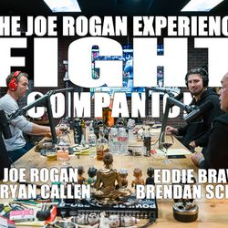 Fight Companion - February 17, 2019