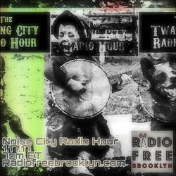 Twang City Radio Hour 1/17/17: Noise City Radio Hour feat. No Ice