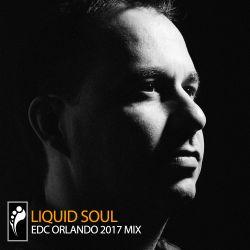 Liquid Soul - EDC Orlando 2017 Mix