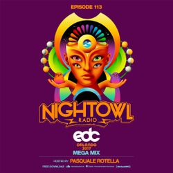 Night Owl Radio 113 ft. EDC Orlando 2017 Mega-Mix