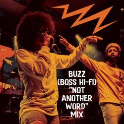 "Buzz (Boss Hi-Fi) ""Not Another Word"" Mix"