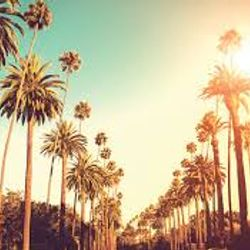 CALIFORNIA SUMMER DREAM 2020  /  LET THE MUSIC FREE YOUR MIND  WITH  JEROME LA SOURIS