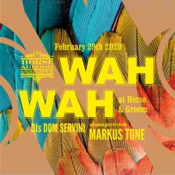 Wah Wah @ The Horse & Groom 29/02/20 with Dom Servini & Markus Tone