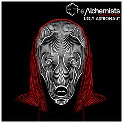 Ugly Astronaut - The Alchemists: Chapter XIX