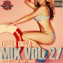 TRIGGA DIGGA MIX VOL. 27