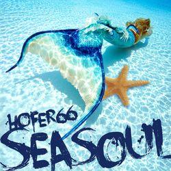 hofer66 - seasoul - live at seasoul beach ibiza - 170722
