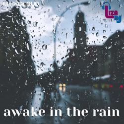 awake in the rain