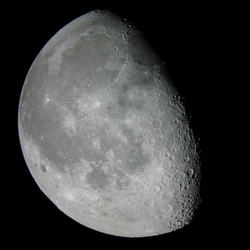 9th Moon Dubs