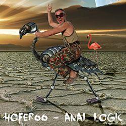 hofer66 - anal logic - ibiza global radio - 140915