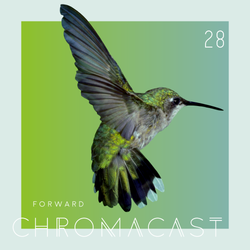 Chromacast 28 - Forward