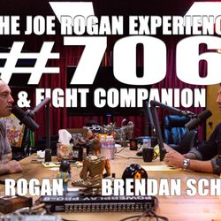 #706 - Brendan Schaub & Fight Companion ? (Part 1)
