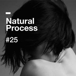 Natural Process #25