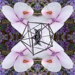 Cosmic Odyssey XXIII