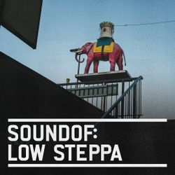 SoundOf: Low Steppa