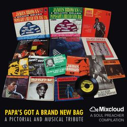 Papa's Got A Brand New Bag (A pictorial and musical tribute)