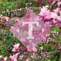 Spring 2017 Mix Pt.3