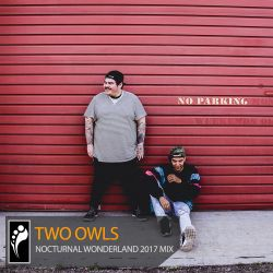 Two Owls – Nocturnal Wonderland 2017 Mix