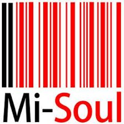 THE GLOBAL GLITCH on MI-SOUL; show 2
