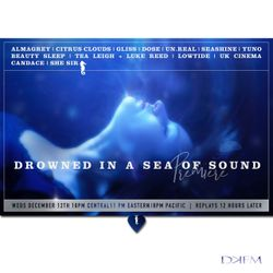 Drowned in a Sea of Sound PREMIERE