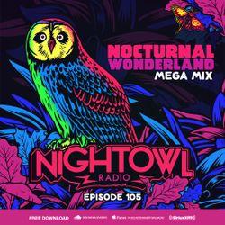 Night Owl Radio 105 ft. Nocturnal Wonderland 2017 Mega-Mix