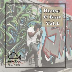 House and Bass Vol.2