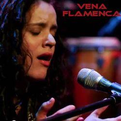 Vena Flamenca