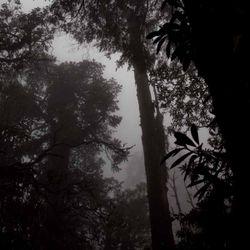 LeYan - Four Notes Melancholic Mix