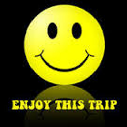 Enjoy This Trip   Session Retro House By Dimo