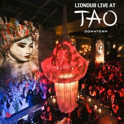 LIONDUB - LIVE AT TAO NYC - R&B | HIP HOP - 10.30.13
