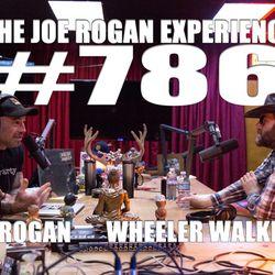 #786 - Wheeler Walker, Jr.