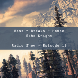 Bass, Breaks & House : Radio Show (#Ep11)